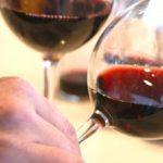 Créditos del Banco Nación para empresas vitivinícolas