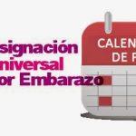 Asignación por Embarazo: Calendario de pago Agosto 2014
