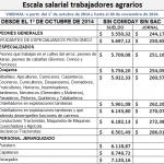 Trabajo Agrario: Escalas salariales y topes octubre 2014 a septiembre 2015