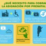 ¿Qué se necesita para cobrar la Asignación por Prenatal?