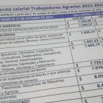 Trabajo Agrario: Escalas salariales octubre 2015 a septiembre 2016