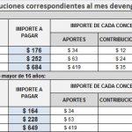 Servicio Doméstico: Nuevos aportes y Contribuciones